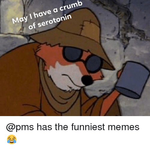 Memes, Dank Memes, and Serotonin: May I have a crumb  of serotonin @pms has the funniest memes 😂