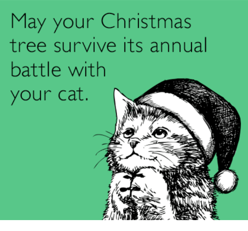 Christmas, Memes, and Christmas Tree: May your Christmas  tree survive its annual  battle with  your cat