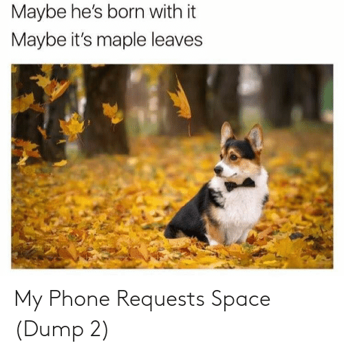Phone, Space, and Born: Maybe he's born with it  Maybe it's maple leaves My Phone Requests Space (Dump 2)