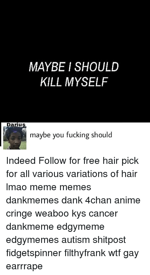 4chan, Anime, and Dank: MAYBE I SHOULD  KILL MYSELF  Darius  IU  maybe you fucking should Indeed Follow for free hair pick for all various variations of hair lmao meme memes dankmemes dank 4chan anime cringe weaboo kys cancer dankmeme edgymeme edgymemes autism shitpost fidgetspinner filthyfrank wtf gay earrrape