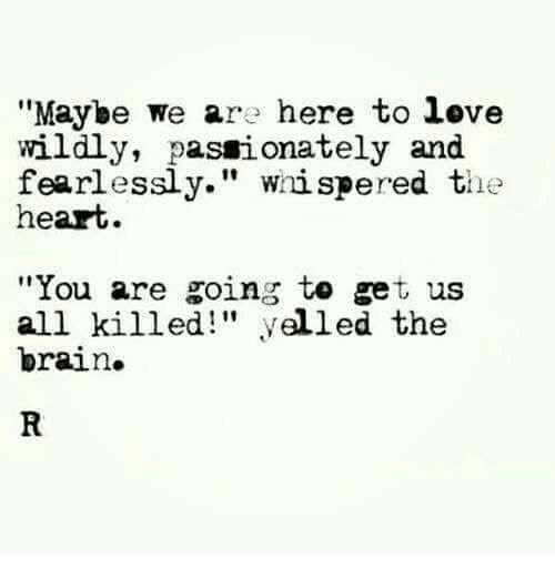 "Love, Brain, and Heart: ""Maybe we are here to love  wildly, passionately and  fearlessly."" wiispered the  heart  ""You are going to get us  all killed"" yelled the  brain."