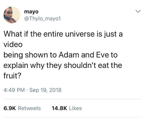 Adam and Eve, Video, and Eve: mayo  @Thylo_mayo1  What if the entire universe is just a  video  being shown to Adam and Eve to  explain why they shouldn't eat the  fruit?  4:49 PM Sep 19, 2018  6.9K Retweets  14.8K Likes