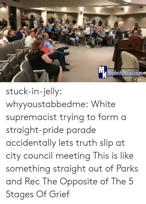 Grief: Mc  ModestoNews.com stuck-in-jelly:  whyyoustabbedme:   White supremacist trying to form a straight-pride parade accidentally lets truth slip at city council meeting   This is like something straight out of Parks and Rec       The Opposite of The 5 Stages Of Grief