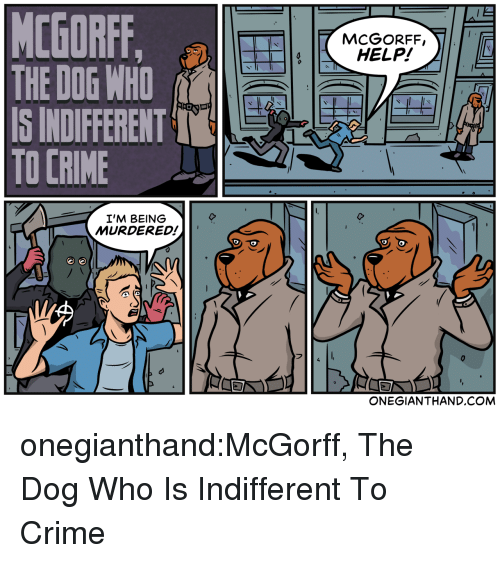 Crime, Tumblr, and Blog: MCGORFF,  HELP!  IS INDIFFERENTT  TO CRIME  I'M BEING  MURDERED!  ONEGIANTHAND.COM onegianthand:McGorff, The Dog Who Is Indifferent To Crime