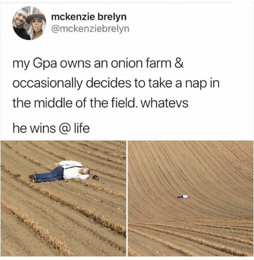 Life, Onion, and The Middle: mckenzie brelyn  @mckenziebrelyn  my Gpa owns an onion farm &  occasionally decides to take a nap in  the middle of the field. whatevs  he wins life