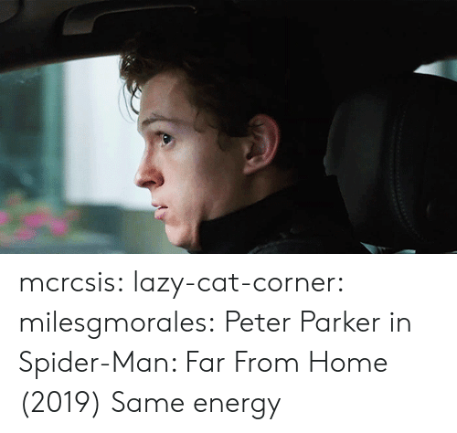Energy, Lazy, and Spider: mcrcsis:  lazy-cat-corner:  milesgmorales:  Peter Parker in Spider-Man: Far From Home (2019)    Same energy