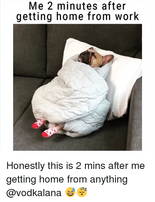 Funny, Work, and Home: Me 2 minutes after  getting home from work Honestly this is 2 mins after me getting home from anything @vodkalana 😅😴