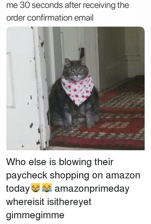 Amazon, Funny, and Shopping: me 30 seconds after receiving the  order confirmation email Who else is blowing their paycheck shopping on amazon today😸😹 amazonprimeday whereisit isithereyet gimmegimme