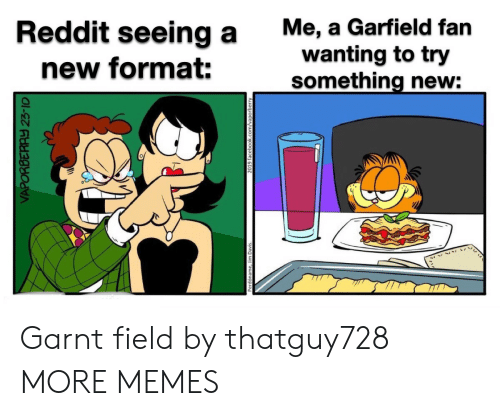 Dank, Facebook, and Memes: Me, a Garfield fan  wanting to try  something new:  Reddit seeing a  new format:  VAPORBERAY 23-10  2019 facebook.com/vaporberry Garnt field by thatguy728 MORE MEMES