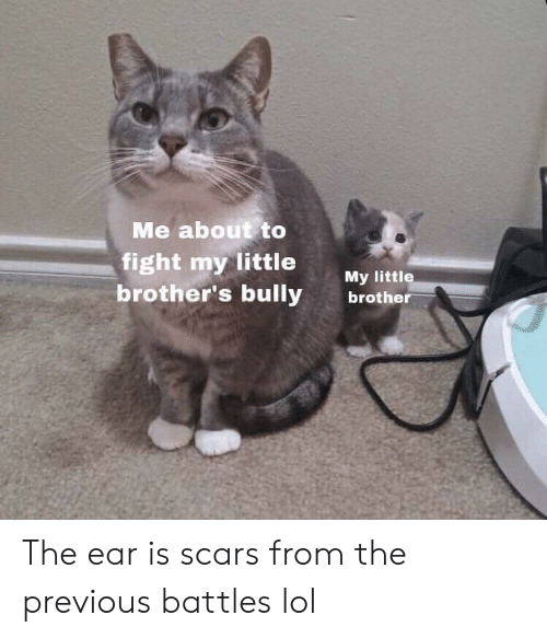 Lol, Fight, and Bully: Me about to  fight my little My ltt  brother's bully brothe The ear is scars from the previous battles lol