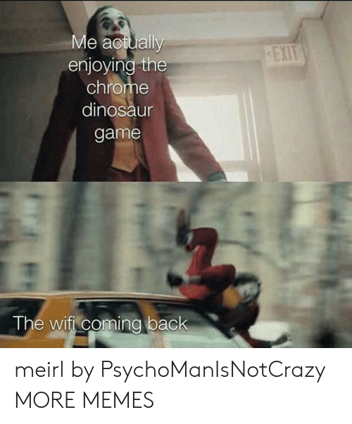 Dinosaur: Me actually  enjoying the  chrome  EXIT  dinosaur  game  The wifi coming back meirl by PsychoManIsNotCrazy MORE MEMES