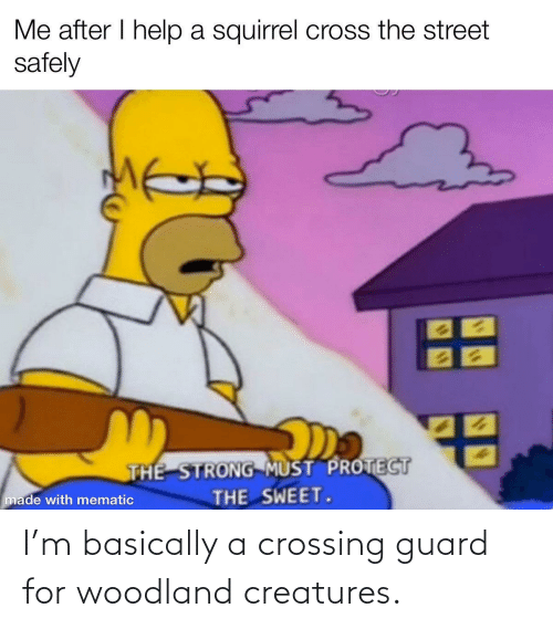Guard: Me after I help a squirrel cross the street  safely  THE STRONG MUST PROTECT  THE SWEET.  made with mematic I'm basically a crossing guard for woodland creatures.