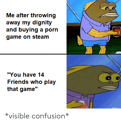 """Friends, Steam, and Game: Me after throwing  away my dignity  and buying a porn  game on steam  """"You have 14  Friends who play  that game"""" *visible confusion*"""