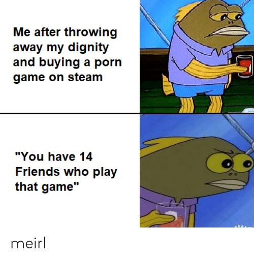 "throwing: Me after throwing  away my dignity  and buying a porn  game on steam  ""You have 14  Friends who play  that game"" meirl"