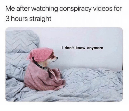 Videos, Conspiracy, and For: Me after watching conspiracy videos for  3 hours straight  I don't know anymore