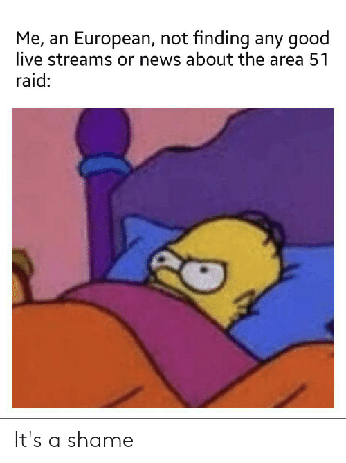 Funny, News, and Good: Me, an European, not finding any good  live streams or news about the area 51  raid: It's a shame