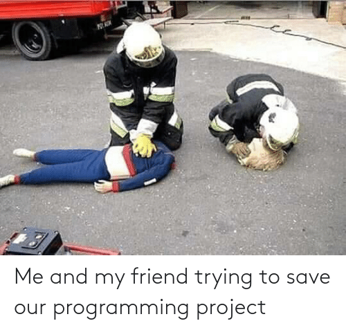 Trying: Me and my friend trying to save our programming project