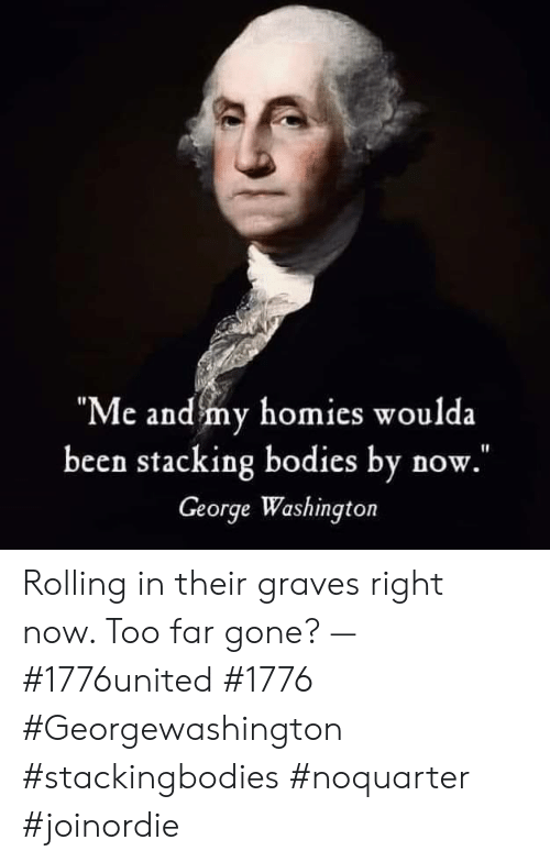 "Bodies , Memes, and George Washington: ""Me and my homies woulda  been stacking bodies by now.  George Washington Rolling in their graves right now. Too far gone? — #1776united #1776 #Georgewashington #stackingbodies #noquarter #joinordie"