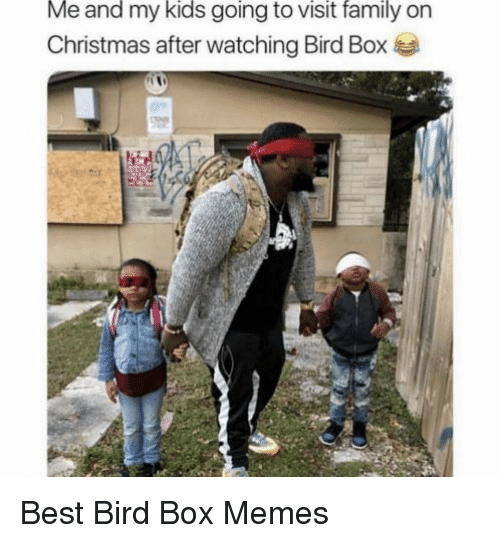 Christmas, Family, and Memes: Me and my kids going to visit family on  Christmas after watching Bird Box Best Bird Box Memes