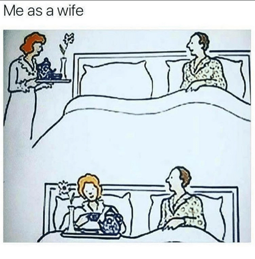 Memes, Wife, and 🤖: Me as a wife