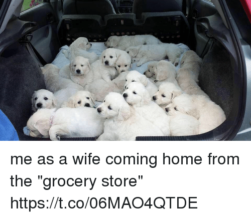 "Home, Girl Memes, and Wife: me as a wife coming home from the ""grocery store"" https://t.co/06MAO4QTDE"