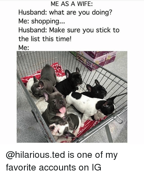 Memes, Shopping, and Ted: ME AS A WIFE:  Husband: what are you doing?  Me: shopping...  Husband: Make sure you stick to  the list this time!  Me: @hilarious.ted is one of my favorite accounts on IG