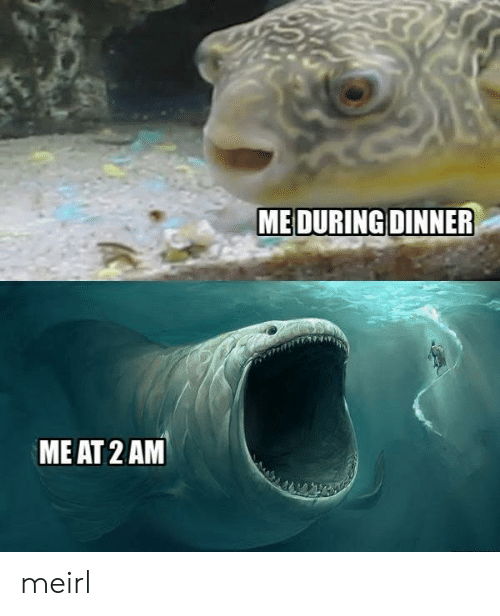 MeIRL, 2 Am, and Me: ME AT 2 AM meirl