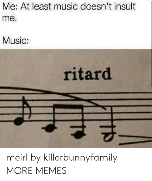 Dank, Memes, and Music: Me: At least music doesn't insult  me.  Music:  ritard meirl by killerbunnyfamily MORE MEMES