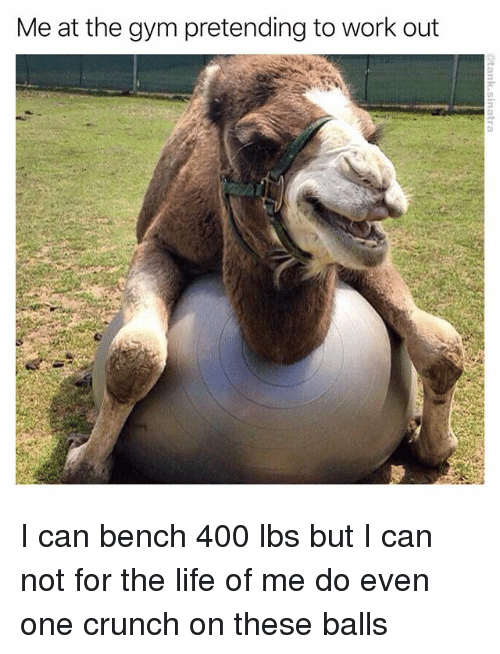 Funny, Gym, and Life: Me at the gym pretending to work out I can bench 400 lbs but I can not for the life of me do even one crunch on these balls