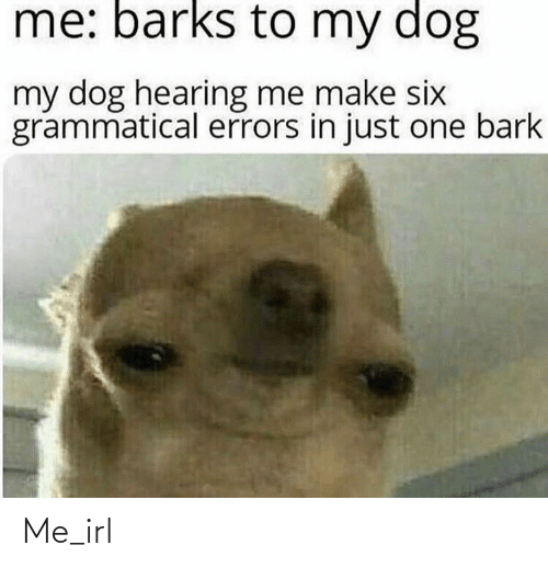 hearing: me: barks to my dog  my dog hearing me make six  grammatical errors in just one bark Me_irl