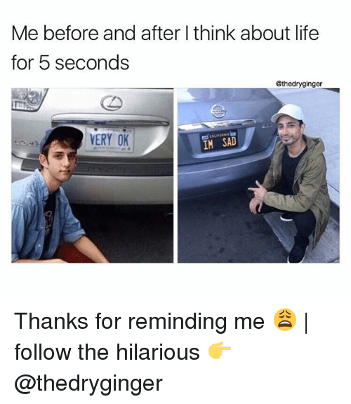 Life, Memes, and Hilarious: Me before and after think about life  for 5 seconds  @thedryginger  VERY OK  IM SAD Thanks for reminding me 😩 | follow the hilarious 👉 @thedryginger
