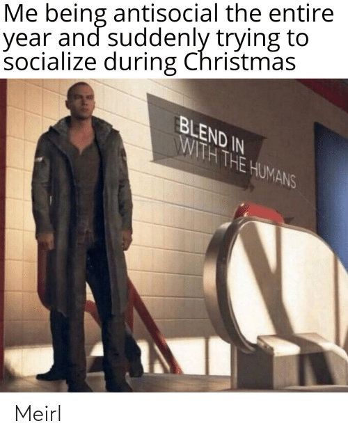 Blend: Me being antisocial the entire  year and suddenly trying to  socialize during Christmas  BLEND IN  WITH THE HUMANS Meirl