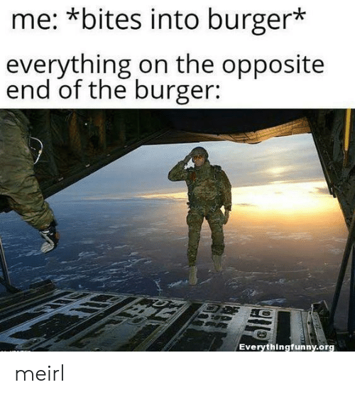 MeIRL, Burger, and Org: me: *bites into burger*  everything on the opposite  end of the burger:  Everythingfunny.org meirl