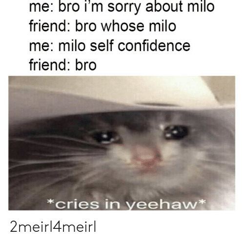 Confidence: me: bro i'm sorry about milo  friend: bro whose milo  me: milo self confidence  friend: bro  *cries in yeehaw* 2meirl4meirl