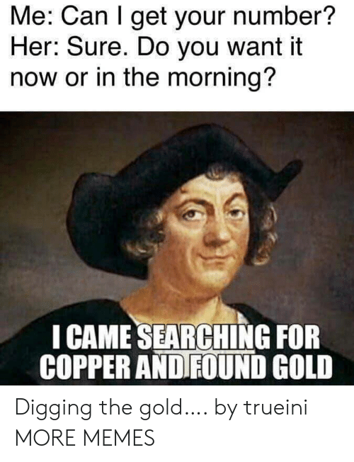 digging: Me: Can I get your number?  Her: Sure. Do you want it  now or in the morning?  I CAME SEARCHING FOR  COPPER AND FOUND GOLD Digging the gold…. by trueini MORE MEMES