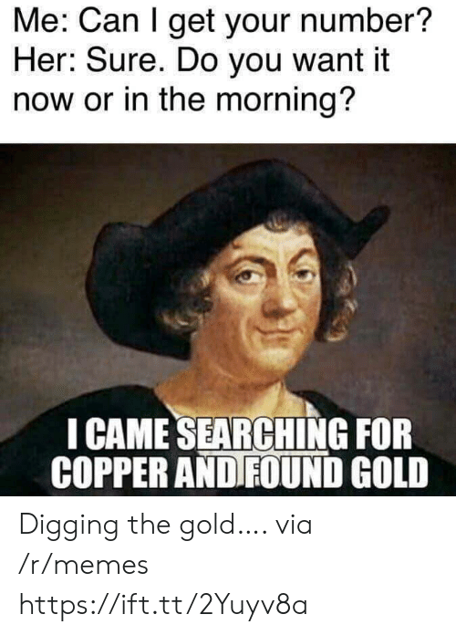 Memes, I Came, and Her: Me: Can I get your number?  Her: Sure. Do you want it  now or in the morning?  I CAME SEARCHING FOR  COPPER AND FOUND GOLD Digging the gold…. via /r/memes https://ift.tt/2Yuyv8a