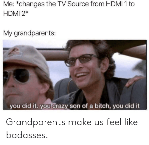 Badasses: Me: *changes the TV Source from HDMI 1 to  HDMI 2*  My grandparents:  you did it. you crazy son of a bitch, you did it Grandparents make us feel like badasses.
