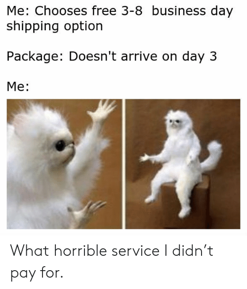 Business, Free, and Day: Me: Chooses free 3-8 business day  shipping option  Package: Doesn't arrive on day 3  Me: What horrible service I didn't pay for.