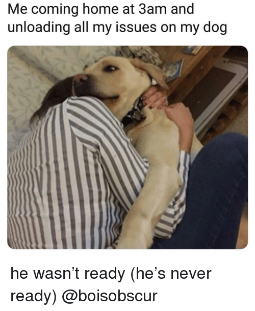 Memes, Home, and Coming Home: Me coming home at 3am and  unloading all my issues on my dog he wasn't ready (he's never ready) @boisobscur