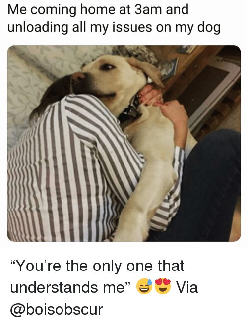 "Funny, Home, and Coming Home: Me coming home at 3am and  unloading all my issues on my dog ""You're the only one that understands me"" 😅😍 Via @boisobscur"
