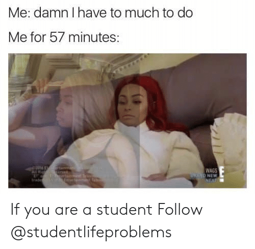 Tumblr, Http, and Com: Me: damn I have to much to do  Me for 57 minutes:  WAGS  RAND NEW If you are a student Follow @studentlifeproblems