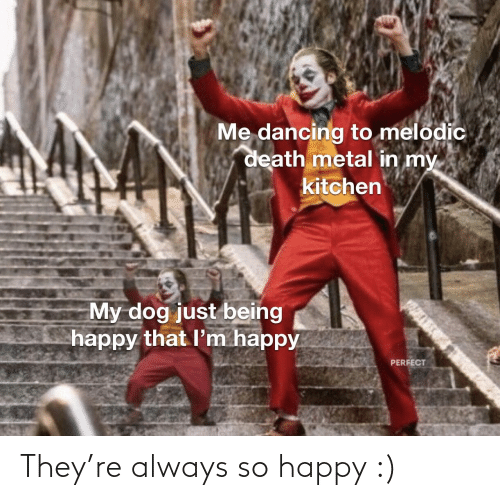 Death: Me dancing to melodic  death metal in my  kitchen  My dog just being  happy that l'm happy  PERFECT They're always so happy :)