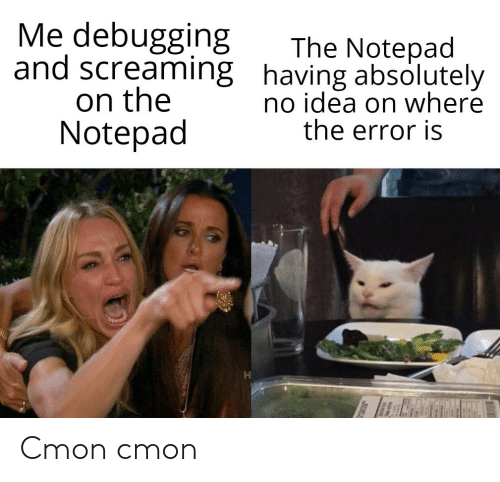 Idea, Notepad, and Screaming: Me debugging  and screaming having absolutely  on the  Notepad  The Notepad  no idea on where  the error is Cmon cmon