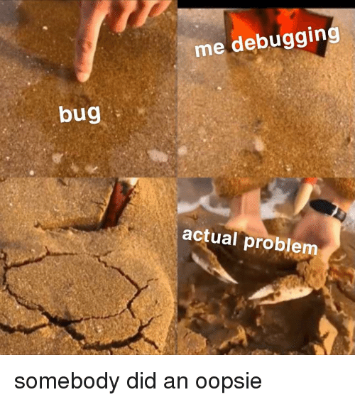 Bug, Did, and Problem: me debugging  bug  actual problem somebody did an oopsie
