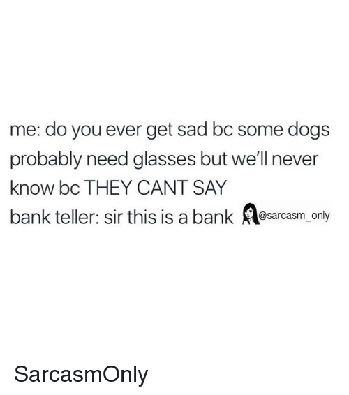 Dogs, Funny, and Memes: me: do you ever get sad bc some dogs  probably need glasses but we'll never  know bc THEY CANT SAY  bank teller: sir this is a bank Asarcasm_ only SarcasmOnly