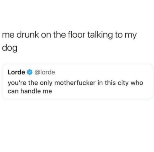Lorde: me drunk on the floor talking to my  dog  Lorde @lorde  you're the only motherfucker in this city who  can handle me