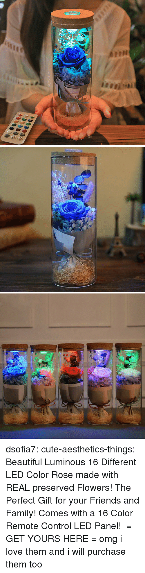 Beautiful, Cute, and Family: me dsofia7: cute-aesthetics-things:  Beautiful Luminous 16 Different LED Color Rose made with REAL preserved Flowers! The Perfect Gift for your Friends and Family! Comes with a 16 Color Remote Control LED Panel! = GET YOURS HERE =  omg i love them and i will purchase them too