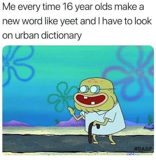 Memes, Urban Dictionary, and Dictionary: Me every time 16 year olds make a  new word like yeet and I have to look  on urban dictionary  @BARF