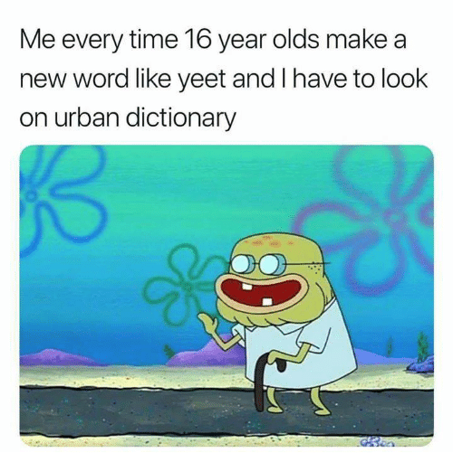 Funny, Tumblr, and Urban Dictionary: Me every time 16 year olds make a  new word like yeet and I have to look  on urban dictionary
