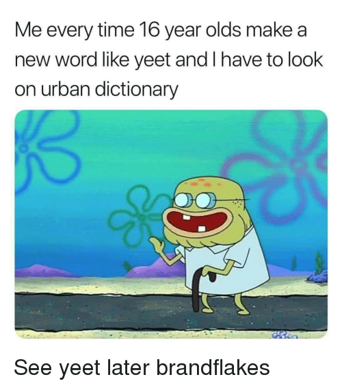 Urban Dictionary, Dictionary, and Time: Me every time 16 year olds make a  new word like yeet and I have to look  on urban dictionary See yeet later brandflakes